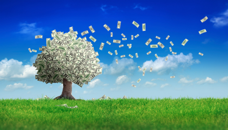 Money doesn't grow on trees-resized-600